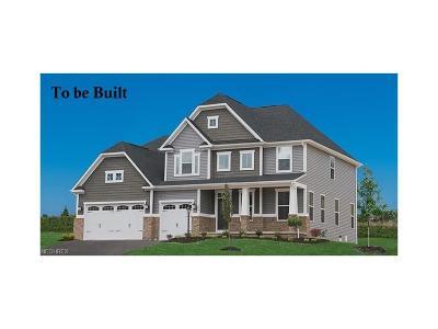 Medina Single Family Home For Sale: 3917 Crimson Harvest Ln