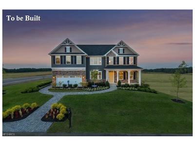 Medina Single Family Home For Sale: 3935 Crimson Harvest Ln
