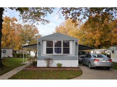 Single Family Home For Sale: 29 Greenhaven Dr