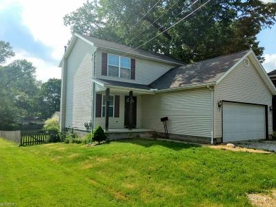Wadsworth Single Family Home For Sale: 440 High St