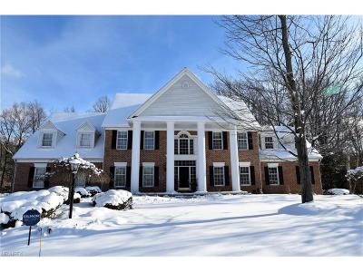 Summit County Single Family Home For Sale: 7621 Berks Way
