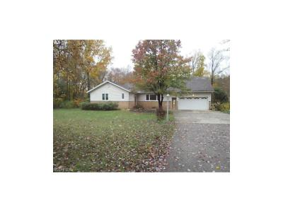 Chagrin Falls Single Family Home For Sale: 8340 Eaton Dr