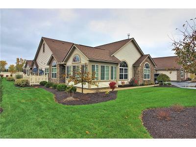 Brunswick Condo/Townhouse For Sale: 1396 Newman Dr