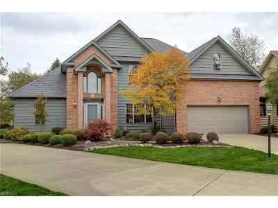 Rocky River Single Family Home For Sale: 21778 Gatehouse Ln