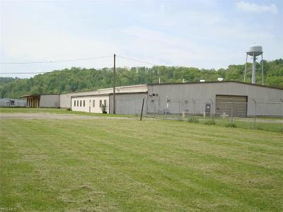 Morgan County Commercial For Sale: 1833-1909 N Riverview Road