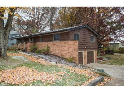Solon Single Family Home For Sale: 5855 Liberty Rd