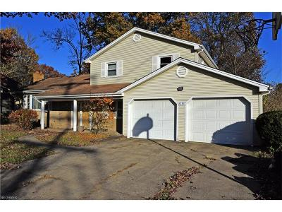 Youngstown Single Family Home For Sale: 6283 Appleridge Dr