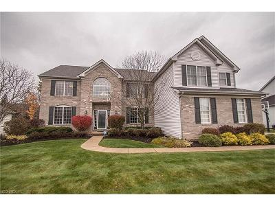 Strongsville Single Family Home For Sale: 11795 Fox Grove