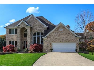 Lake County Single Family Home For Sale: 2150 Kimberly Ct