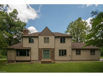 Newbury Single Family Home For Sale: 15890 Iron Tree