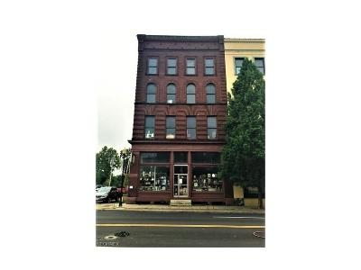 Zanesville Commercial For Sale: 12 Main St