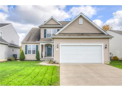 North Ridgeville Single Family Home For Sale: 5115 Ravenway Dr