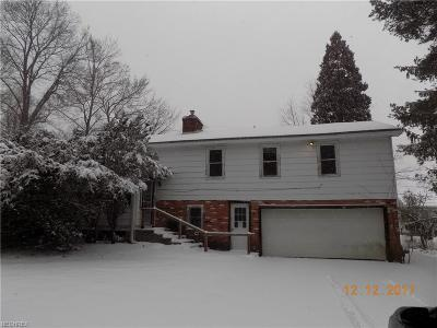 Chardon Single Family Home For Sale: 11703 Basswood Rd