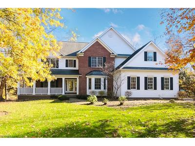 Geauga County Single Family Home For Sale: 17401 Lakesedge Trl