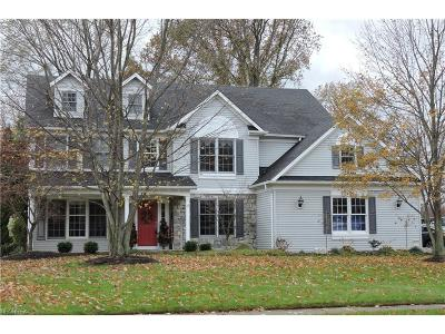 Avon Lake Single Family Home For Sale: 456 Crestwood Dr