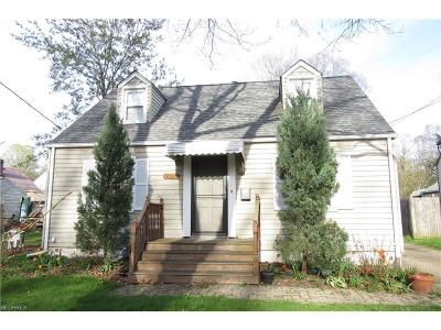 Painesville Single Family Home For Sale: 107 Carroll Ave