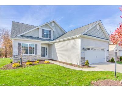 Strongsville Single Family Home For Sale: 13953 Laurelbrook Oval