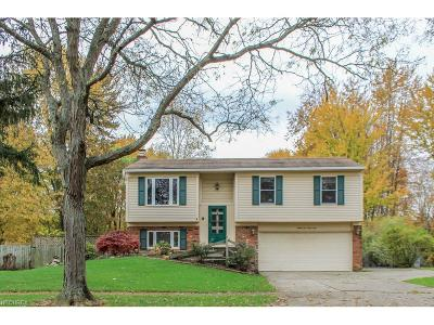 Single Family Home For Sale: 8599 Fairlane Dr