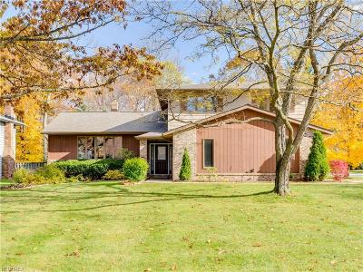 Solon Single Family Home For Sale: 5157 Stansbury Dr