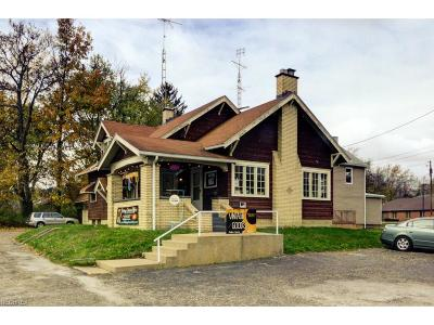 Stark County Commercial For Sale: 3417 Cleveland Ave Northwest