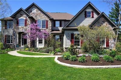 Medina Single Family Home For Sale: 3333 Blue Heron