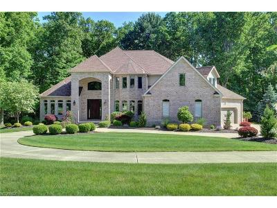 Brecksville Single Family Home For Sale: 6579 Harold Dr