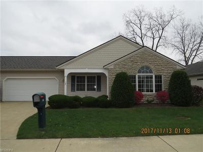 Elyria Single Family Home For Sale: 137 Arrow Ct