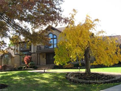 Summit County Single Family Home For Sale: 538 Timber Creek Dr