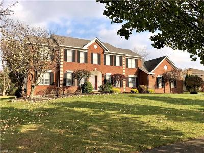 Parma Single Family Home For Sale: 7695 Roeper Rd