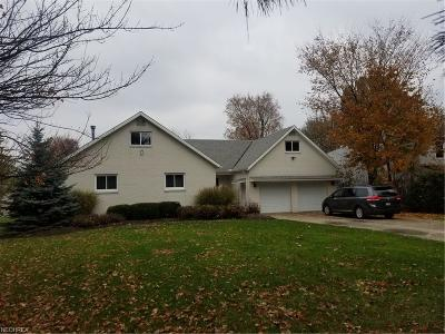 Strongsville Single Family Home For Sale: 19766 Lunn Rd