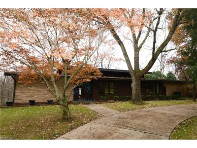 Canfield Single Family Home For Sale: 7867 Spring Lake Ln