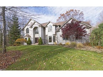 Chagrin Falls Single Family Home For Sale: 10710 Dawson Dr