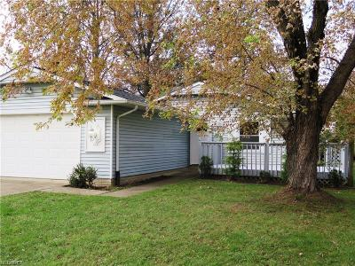 North Ridgeville Single Family Home For Sale: 5918 Olive Ave