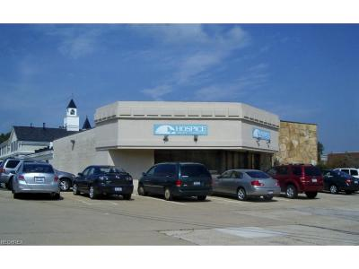 Commercial For Sale: 799 North Court St