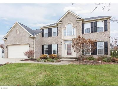 Wadsworth Single Family Home For Sale: 560 Pebblestone Ct