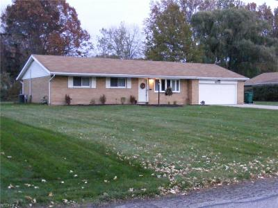 Mentor Single Family Home For Sale: 6213 Bryson Dr