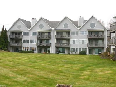 Fairport Harbor Condo/Townhouse For Sale: 665 Second St #7