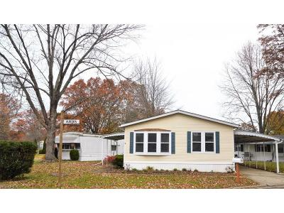 Olmsted Township Single Family Home For Sale: 12 Aurora Dr
