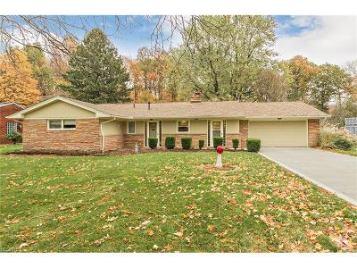 Mentor Single Family Home For Sale: 5631 Meister Rd
