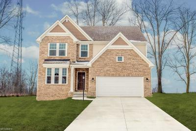 Wadsworth Single Family Home For Sale: 364 Edenmore Dr