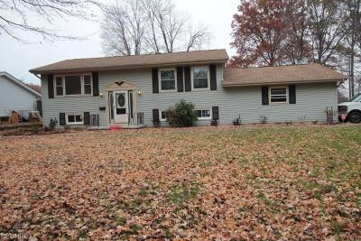 Youngstown Single Family Home For Sale: 3772 Bryant Dr