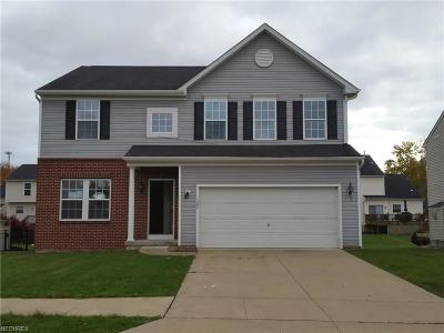 Painesville OH Single Family Home For Sale: $175,000