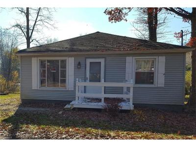Chippewa Lake Single Family Home For Sale: 567 Twilight Trl