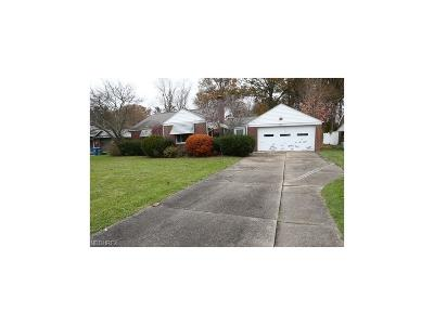Struthers Single Family Home For Sale: 153 Hamilton Blvd