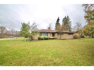 Broadview Heights Single Family Home For Sale: 8748 Falls Ln