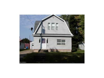 Struthers Single Family Home For Sale: 289 Poland Ave