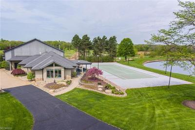 Medina Single Family Home For Sale: 7291 Stone Rd