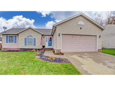 Summit County Single Family Home For Sale: 1375 Redstone Ave