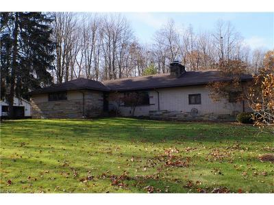 Geauga County Single Family Home For Sale: 13338 Green Dr