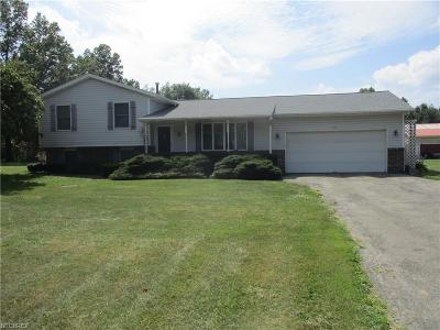 Single Family Home For Sale: 3749 Mahoning Rd